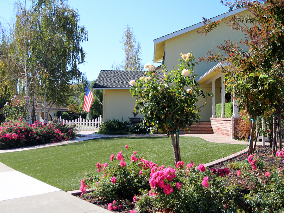Artificial Grass Carpet Oasis California Roof Top Front Yard Design
