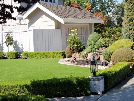 Artificial Grass Photos: Artificial Grass Carpet Indio Hills, California, Front Yard Landscape Ideas