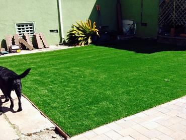 Artificial Grass Photos: Artificial Grass Carpet Mead Valley, California Pet Grass, Dogs Park