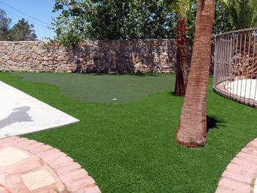 Artificial Grass Photos: Artificial Grass Good Hope, California Landscaping Business, Small Backyard Ideas