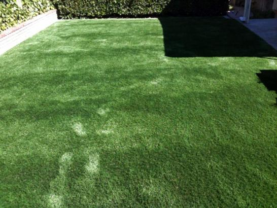 Artificial Grass Photos: Artificial Grass Installation Blythe, California Gardeners, Backyard Landscaping