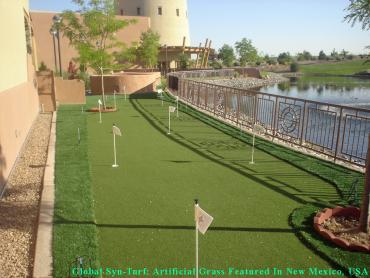 Artificial Grass Photos: Artificial Grass Installation Norco, California Design Ideas, Backyard Designs