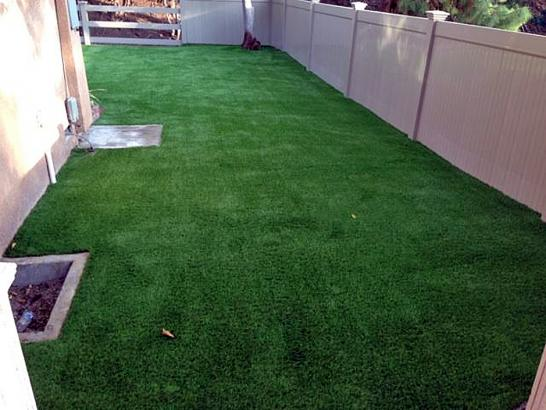 Artificial Grass Photos: Artificial Grass Mecca, California Landscaping Business, Backyard Landscaping Ideas