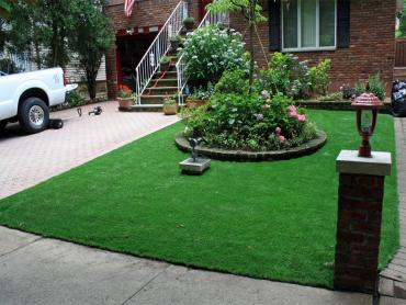 Artificial Grass Photos: Artificial Lawn Desert Center, California, Front Yard Landscaping