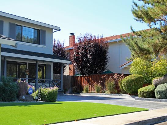 Artificial Grass Photos: Artificial Lawn Homeland, California Home And Garden, Front Yard Ideas