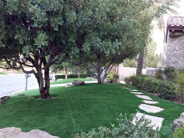 Artificial Grass Photos: Artificial Lawn Mountain Center, California Lawn And Landscape, Front Yard Landscape Ideas