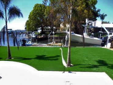 Artificial Grass Photos: Artificial Lawn Nuevo, California Landscaping Business, Backyard Landscaping Ideas