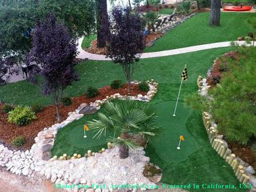Artificial Turf Cost Corona, California Landscape Photos, Backyard Landscaping Ideas artificial grass