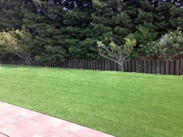 Artificial Grass Photos: Artificial Turf Cost Highgrove, California Landscaping, Landscaping Ideas For Front Yard