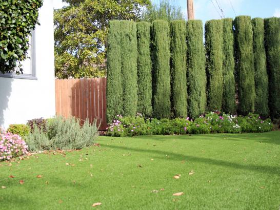 Artificial Grass Photos: Artificial Turf Cost Moreno Valley, California Design Ideas, Front Yard Design