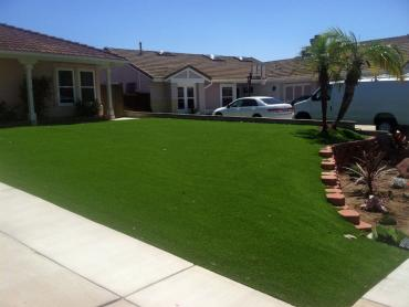 Artificial Grass Photos: Artificial Turf Cost Mountain Center, California Landscape Photos, Front Yard Landscape Ideas