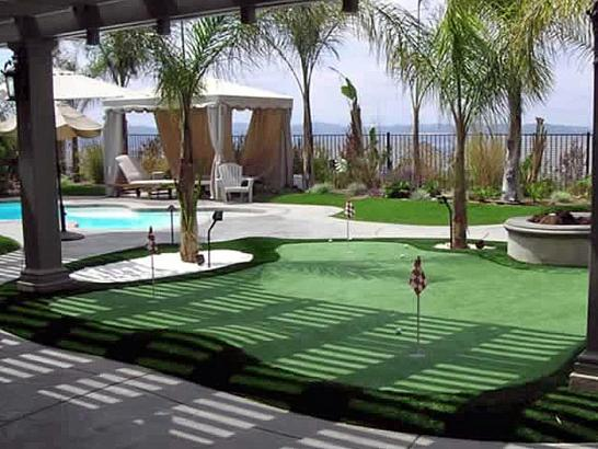 Artificial Grass Photos: Artificial Turf Cost Nuevo, California Gardeners, Swimming Pool Designs