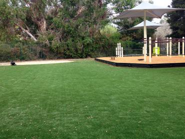 Artificial Grass Photos: Artificial Turf Garnet, California Indoor Playground