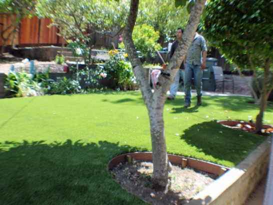 Artificial Grass Photos: Artificial Turf Installation Desert Hot Springs, California Landscape Design, Backyard Designs