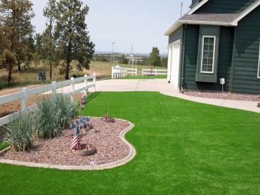 Artificial Grass Photos: Artificial Turf Installation Rubidoux, California Design Ideas, Front Yard Design