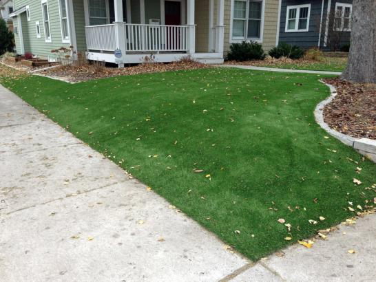 Artificial Grass Photos: Artificial Turf Mecca, California Landscaping, Landscaping Ideas For Front Yard