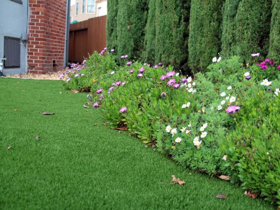 Artificial Grass Photos: Best Artificial Grass East Hemet, California Backyard Deck Ideas, Landscaping Ideas For Front Yard