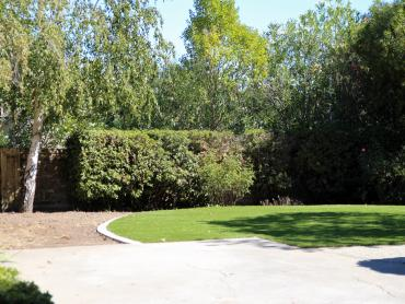 Artificial Grass Photos: Best Artificial Grass Palm Desert, California Backyard Playground, Backyard