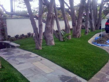Artificial Grass Photos: Best Artificial Grass Romoland, California Landscape Ideas, Front Yard Design