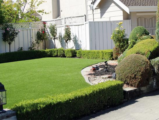 Artificial Grass Photos: Best Artificial Grass Wildomar, California Landscape Photos, Landscaping Ideas For Front Yard