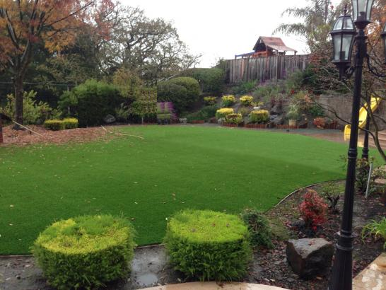 Artificial Grass Photos: Best Artificial Grass Woodcrest, California Lawn And Garden, Backyard