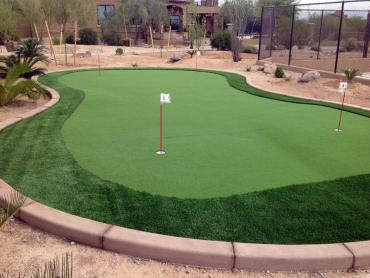 Artificial Grass Photos: Fake Grass Cabazon, California Home And Garden, Backyard Landscaping Ideas