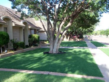 Artificial Grass Photos: Fake Grass Carpet Corona, California Design Ideas, Front Yard