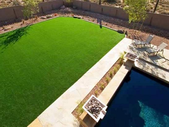 Artificial Grass Photos: Fake Grass Carpet Indian Wells, California Landscaping, Backyard Design