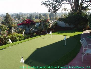 Artificial Grass Photos: Fake Grass Carpet Mead Valley, California Indoor Putting Greens, Backyard Design