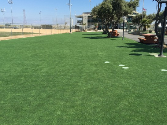 Artificial Grass Photos: Fake Grass Carpet San Jacinto, California Landscaping Business, Parks