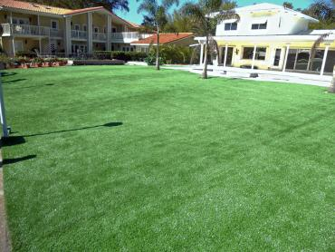 Artificial Grass Photos: Fake Grass Carpet Winchester, California Gardeners, Above Ground Swimming Pool