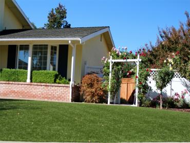Artificial Grass Photos: Fake Grass East Hemet, California Rooftop, Small Front Yard Landscaping