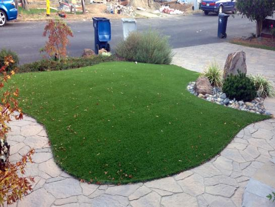 Artificial Grass Photos: Fake Grass Good Hope, California Garden Ideas