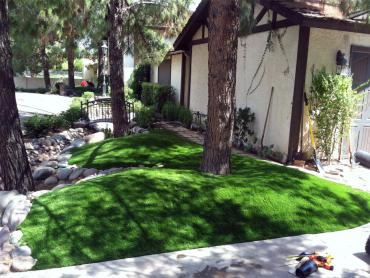 Artificial Grass Photos: Fake Grass Rubidoux, California, Front Yard Ideas