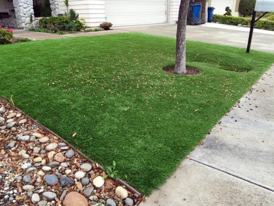 Artificial Grass Photos: Fake Lawn Highgrove, California Landscape Ideas, Front Yard Landscaping