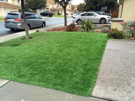 Artificial Grass Photos: Fake Lawn Home Gardens, California Lawn And Landscape, Front Yard Design