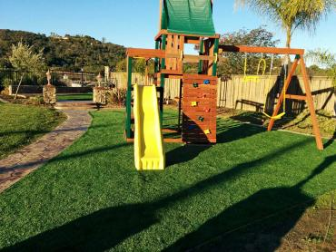 Artificial Grass Photos: Fake Lawn Murrieta, California Garden Ideas, Backyard