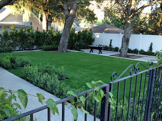 Artificial Grass Photos: Fake Lawn Pedley, California Home And Garden, Landscaping Ideas For Front Yard