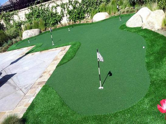 Artificial Grass Photos: Fake Turf Corona, California Diy Putting Green, Backyard Landscaping