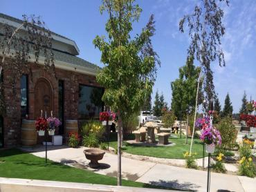Artificial Grass Photos: Fake Turf Good Hope, California City Landscape, Commercial Landscape