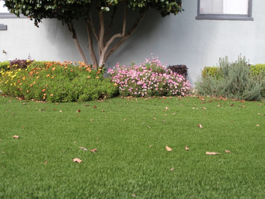 Artificial Grass Photos: Fake Turf Idyllwild-Pine Cove, California Rooftop, Front Yard