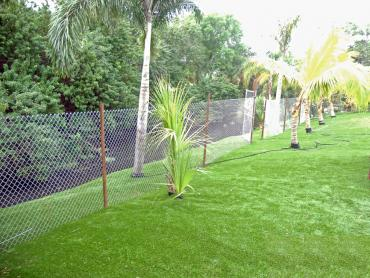 Artificial Grass Photos: Fake Turf Murrieta Hot Springs, California Rooftop, Backyards