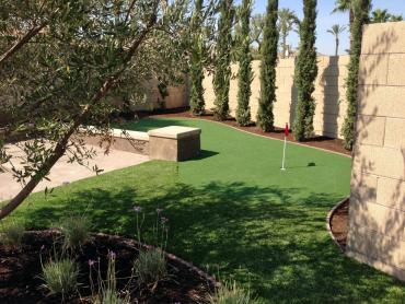 Artificial Grass Photos: Fake Turf Norco, California Putting Green Grass, Small Backyard Ideas