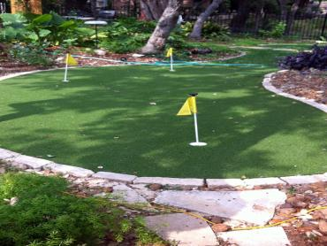 Artificial Grass Photos: Fake Turf Winchester, California Landscape Design, Backyard Landscaping