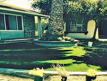 Artificial Grass Photos: Faux Grass Green Acres, California Landscape Ideas, Small Front Yard Landscaping