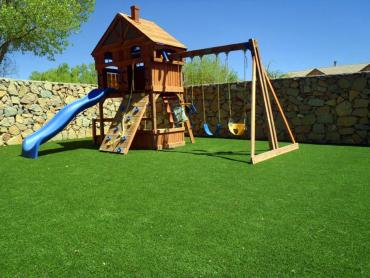 Artificial Grass Photos: Faux Grass Lakeland Village, California Landscape Design, Backyards