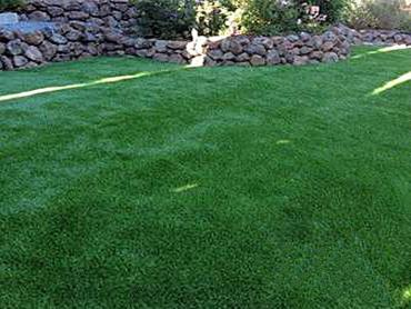 Artificial Grass Photos: Faux Grass Murrieta, California Dog Parks, Backyard Landscaping Ideas