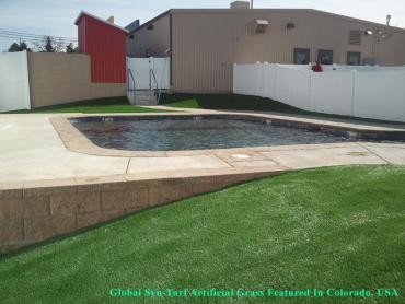 Artificial Grass Photos: Faux Grass Quail Valley, California Landscaping, Swimming Pools