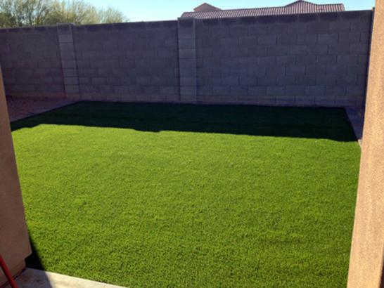Artificial Grass Photos: Grass Carpet Lake Elsinore, California Landscape Rock, Backyard Landscape Ideas