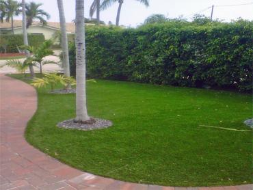 Artificial Grass Photos: Grass Installation Blythe, California Home And Garden, Small Front Yard Landscaping